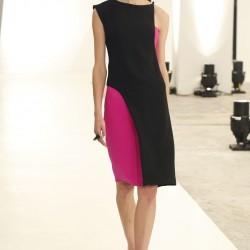 En Yeni İki Renk Elbise Bayan Modası