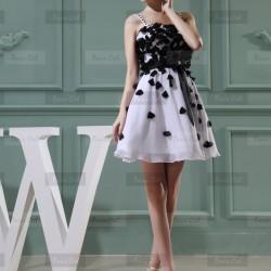 Siyah Beyaz 2015 Kloş Elbise Modelleri